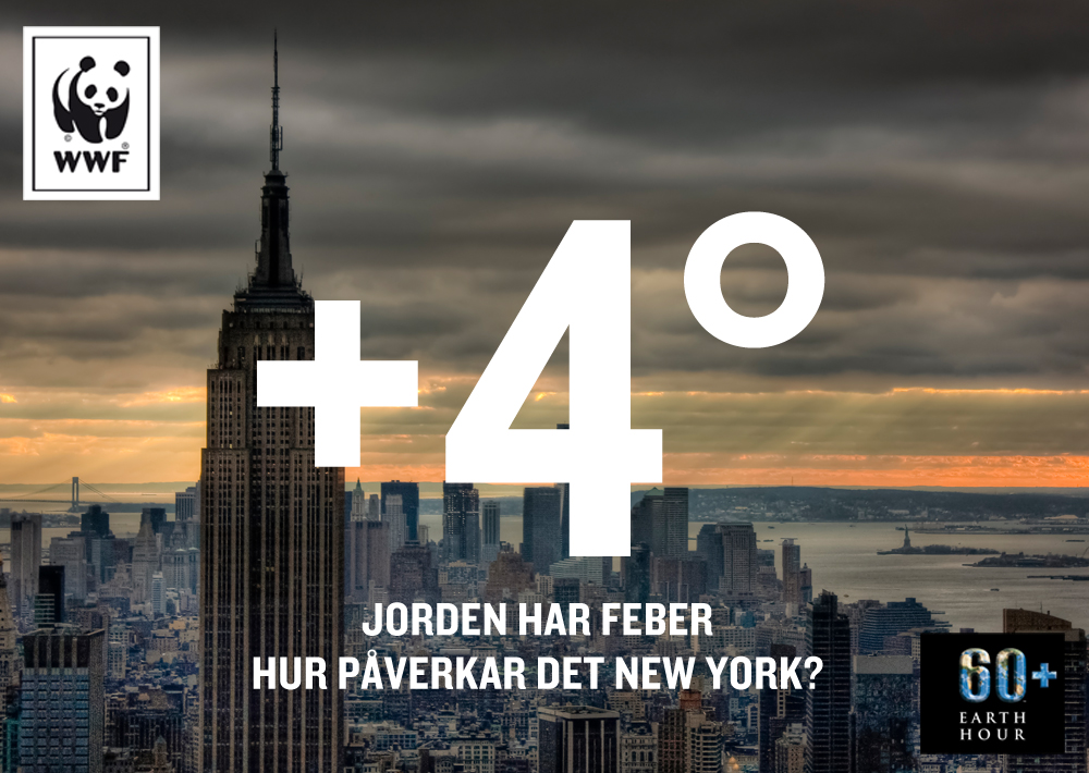 NYC+4C